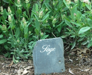 image of handpainted slate plant labels