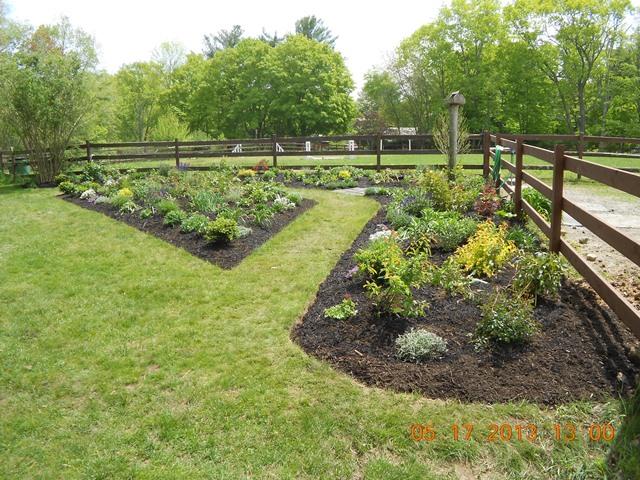 New perennial borders for Thirsty Boots Farm paddocks.